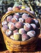 figs-in-basket