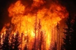 forest-fire-drought