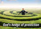 hedge-of-protection-sm-300x213