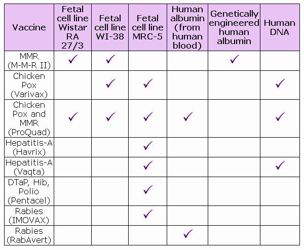 fetal cells - vaccines
