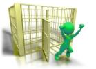 free from captivity