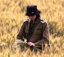 glean field