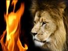 satans-fire